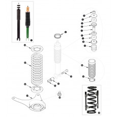 Shock absorber and coil spring