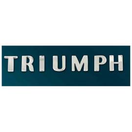 Triumph Nameplate