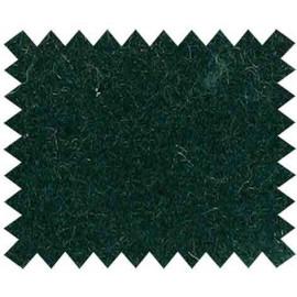 Triumph Colour sample