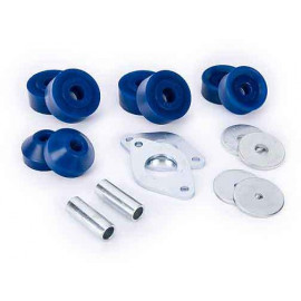 Triumph Polyurethane bush kit