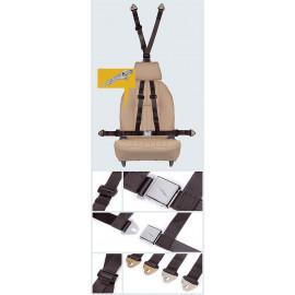 Full harnesses