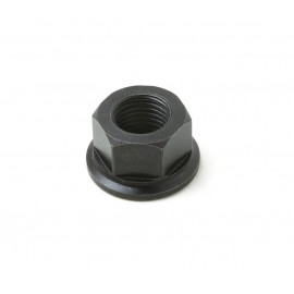 Cylinder head nut