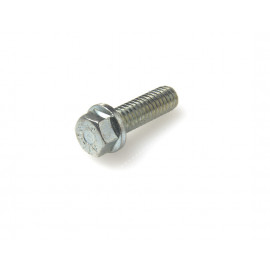 Taptite screw