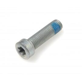 Allen screw