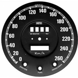Speedometer face